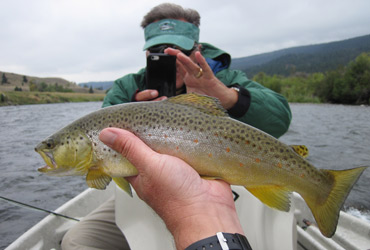 Wild Adventure Fly Fishing
