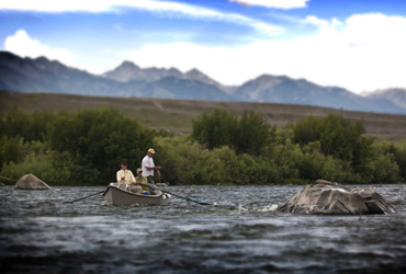 Wild Adventure Guided Fly Fishing photo